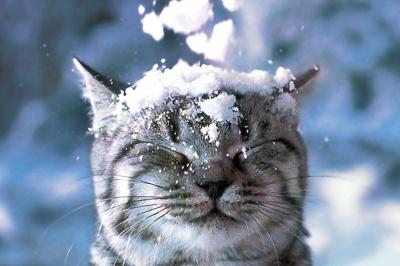 Синоптик розповіла, коли чекати першого снігу