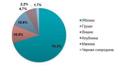 В Україні впали ціни на яблука через рекордний врожай