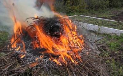 Супрун розповіла про небезпеку спалювання восени сухої трави і листя