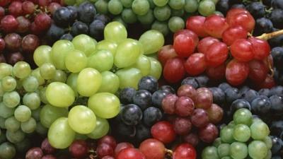 У винограді виявили панацею від найсмертоноснішої форми раку