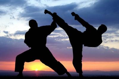 На Буковині відбулося велике свято бійців карате