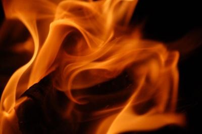 Масштабна пожежа: на Буковині вогонь охопив 1,5 га землі із сухою травою