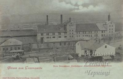 Історія старих Чернівців: про перше пиво і пивоварні у місті