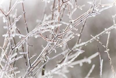 Коли чекати морозів: синоптик дав прогноз