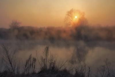 Україну накриє туман: синоптики назвали області
