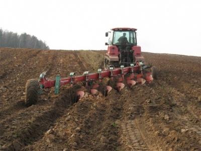 Загибель бійця та «яблучний» пікет фермерів. 10 головних новин Буковини за тиждень
