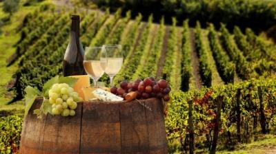"""Українські винороби домовилися про відмову від назв """"коньяк"""" та """"шампанське"""""""