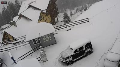 У Карпатах випав сніг - фото