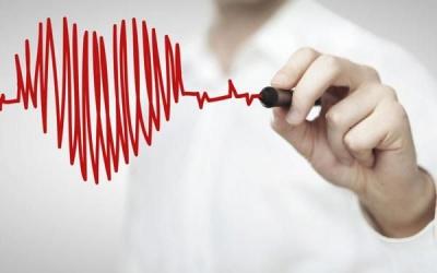 Медики пояснили, які звички вбивають ваше серце