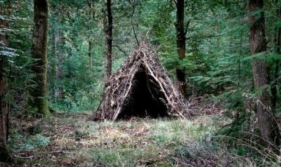 На Тернопільщині мати й син замерзли на смерть у лісовому курені