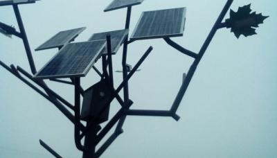 """Під Черніговом з'явилося """"сонячне дерево"""", яке заряджає телефони"""