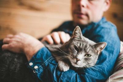 Які хвороби лікують тварини