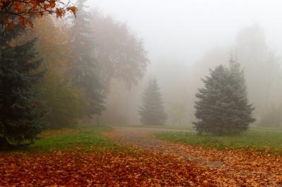 Синоптик розповіла, якою завтра буде погода в Україні