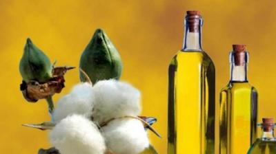 Яка олія дуже корисна для здоров'я чоловіків