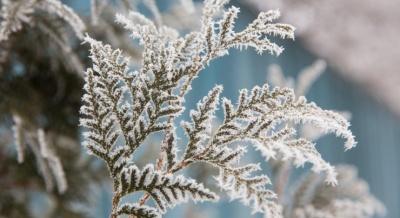 До України суне «зима»: синоптик розповіла, де очікується перший сніг
