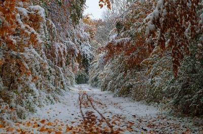 Синоптик попередила про різке погіршення погоди