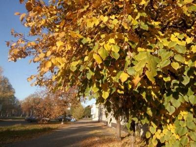 Залишати будинок і сваритися. Що не можна робити 16 листопада