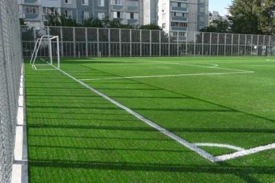 У Чернівцях на проспекті може з'явитись нове футбольне поле зі штучною травою