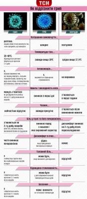 Як відрізнити грип від ГРВІ та застуди - інфографіка
