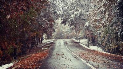 Синоптики попередили про різку зміну погоди: сніг, вітер, ожеледиця