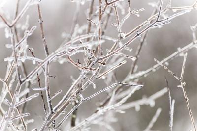 Коли на Буковину прийдуть морози: прогноз від синоптика