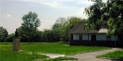 Міг вбити через ревнощі: у жителів села на Буковині своя версія подій з повісті Кобилянської «Земля»
