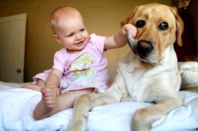 Як домашні тварини впливають на дітей