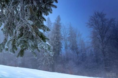 Якою буде погода взимку: прогноз від синоптиків