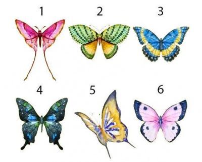 Оберіть метелика: цікавий тест, який розкаже про приховані сторони особистості