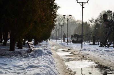 В Україні тримається відлига: туман, дощ та плюсова температура