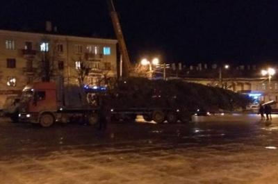 До Чернівців привезли головну новорічну ялинку - фото