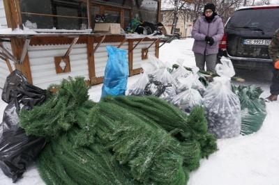 У Чернівцях почали прикрашати головну ялинку міста - фото