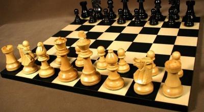 У Чернівцях помер відомий тренер з шахів