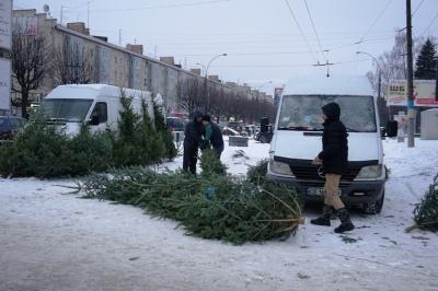 У Чернівцях на ремонтній ділянці проспекту з'явився стихійний ринок новорічних ялинок - фото