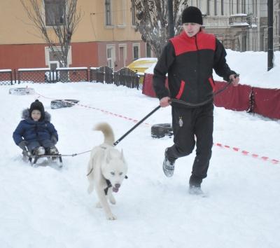 У центрі Чернівців дітей катали на хаскі – фото