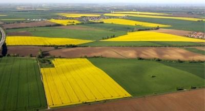 В Україні знову продовжили мораторій на продаж землі