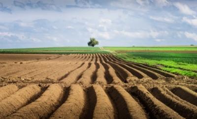 Об'єднаним громадам за рік передали 1,5 мільйона га полів