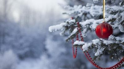 Якою буде погода на Буковині на новорічні свята: прогноз синоптиків