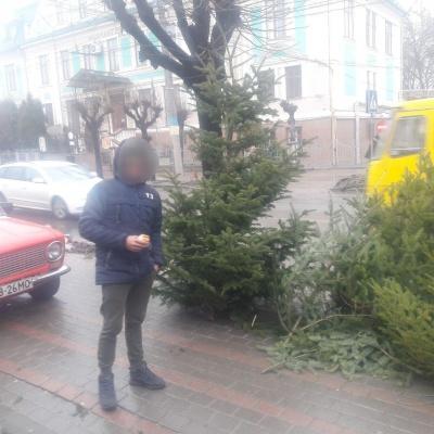 У Чернівцях в останній день року поліція оштрафувала продавців ялинок - фото