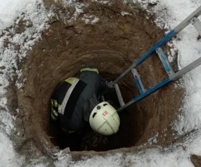 На Буковині співробітники ДСНС врятували собаку, який впав у яму