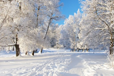 Синоптики обіцяють у січні дві хвилі холоду