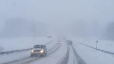 На Буковині оголосили штормове попередження: сильний туман та ожеледиця