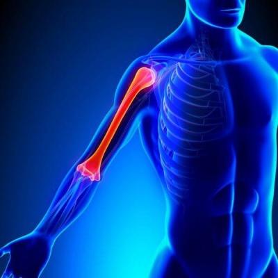 Що ж робити, щоб всі 206 кісток у вашому тілі служили вам довгі роки і залишалися у відмінному стані?