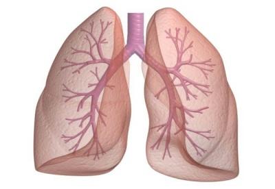 П'ять кращих порад для здоров'я легенів