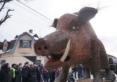 Вікінги та величезний слон: чим дивували маланкарі у Вашківцях - фото
