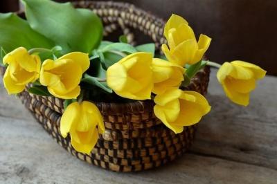Чому не можна дарувати жовті квіти