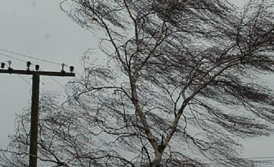 Сильний вітер зруйнував дах житлового будинку на Буковині