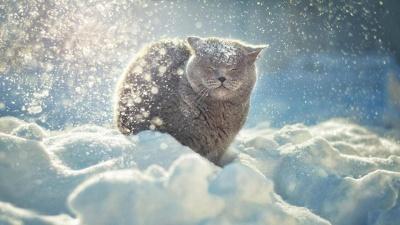 До України повертаються справжні морози