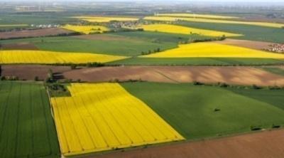 МЕРТ пропонує президенту ветувати продовження земельного мораторію