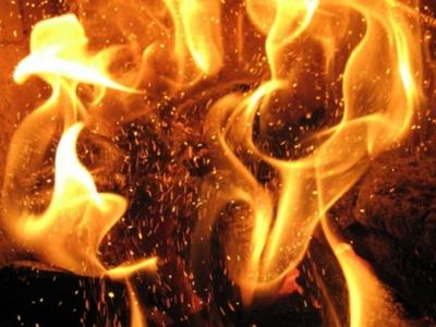 У Чернівецькій області пожежа знищила господарську будівлю та дрова